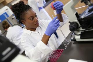Matriculants Wanted For Laboratory Assistant Learnership In NW