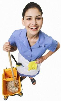Government Cleaner
